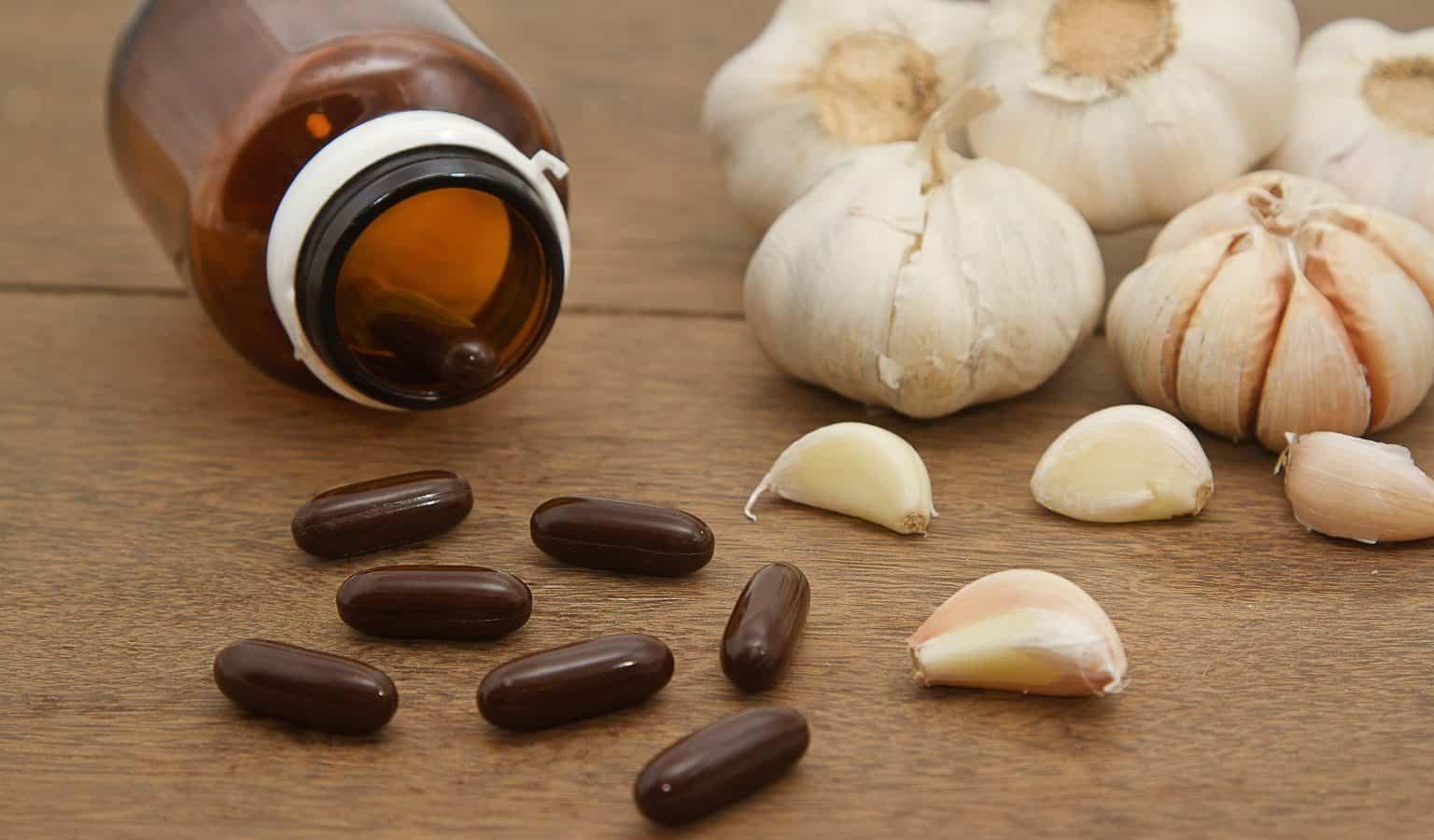 Best Garlic Supplements, Harold P. Freeman