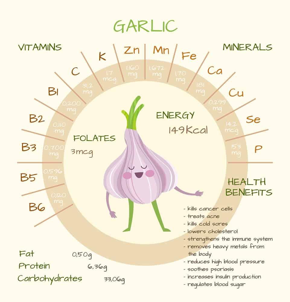 Best Garlic Supplements, Harold P. Freeman, benefits