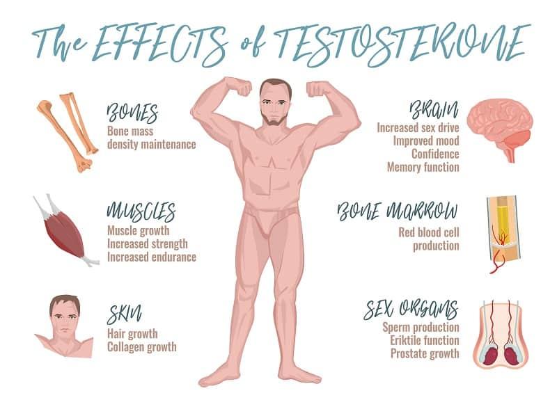 Best Testosteron Booster for Men over 50, harold p. freeman
